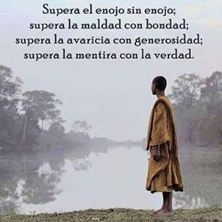 @albarela •