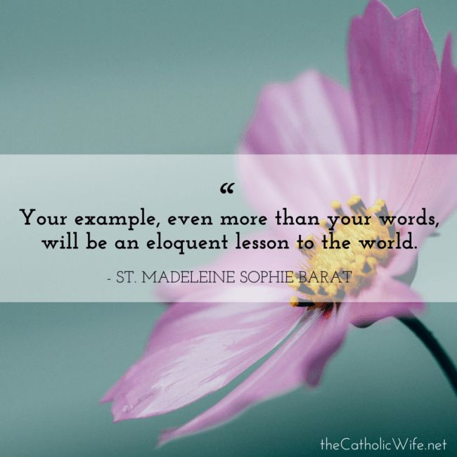 Monday Morning with the Saints {no. 34 - St. Madeleine Sophie Barat} | Katie Sciba at The Catholic Wife