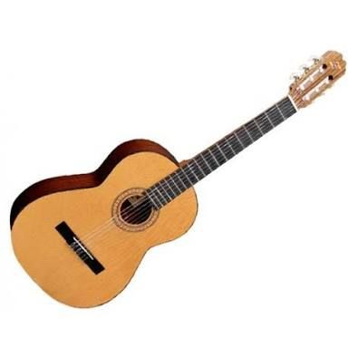 Image result for instrumentos musicales chilenas