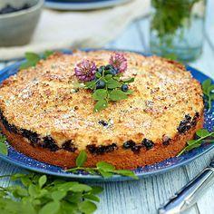 "- Blåbärskaka med Kokos - Blueberry-Coco-""Tosca""- Cake"