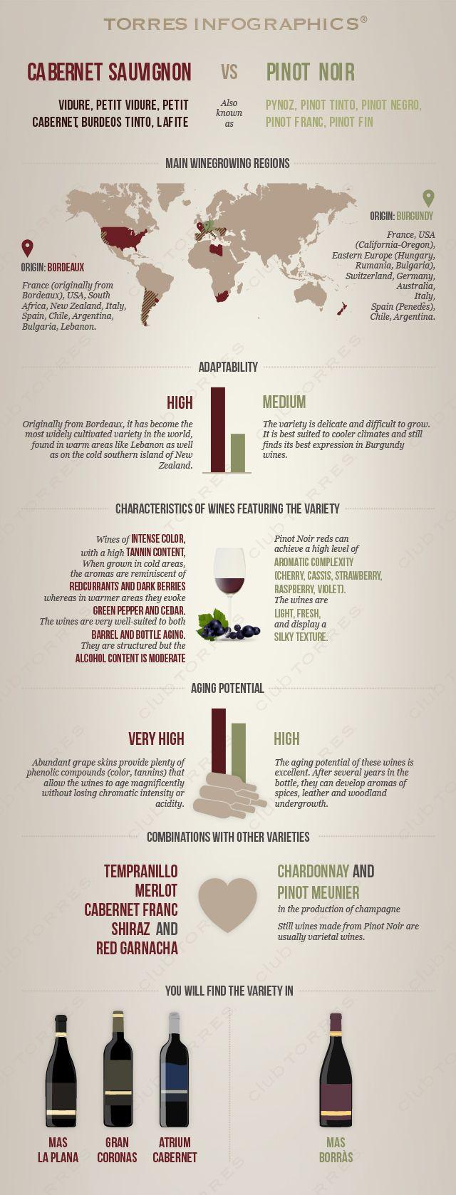 #Infography: Cabernet Sauvignon Vs Pinot Noir. #Wine