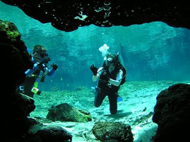 PADI Certification Courses at Very Affordable Rates