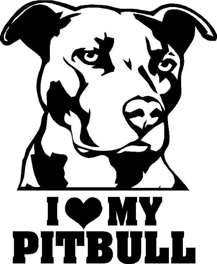 pitbull pictures with sayings | love my pitbull decal 4