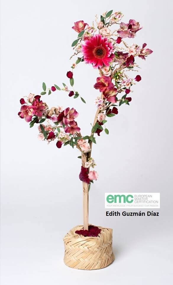 SPECTACULAR design by Edith Guzmán Díaz