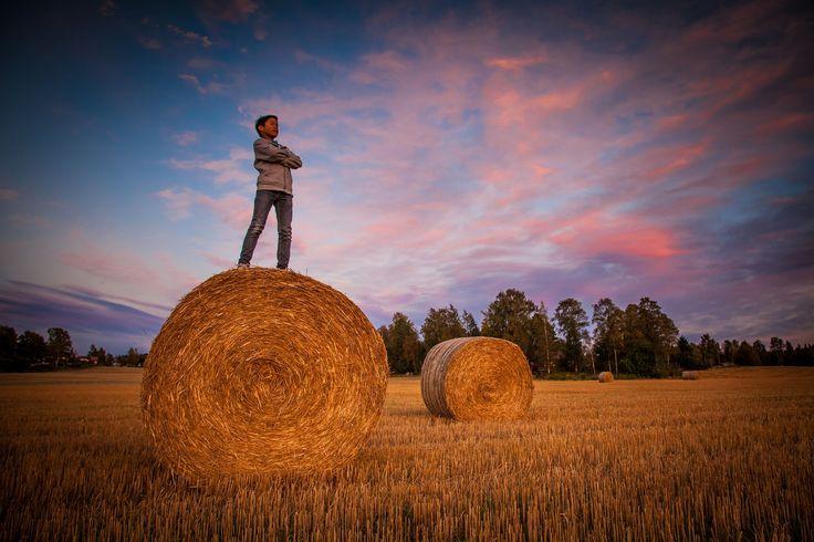 Master of the farm field by John Einar Sandvand on 500px