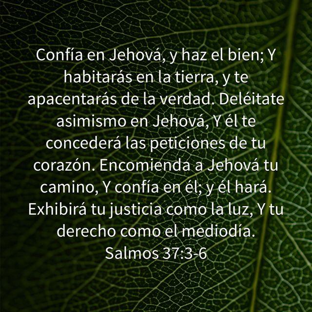 Confía en Jehová, y haz el bien; Y habitarás en la tierra, y te apacentarás de la verdad. Deléitate asimismo en Jehová, Y él te concederá las peticiones de tu corazón. Encomienda a Jehová tu camino, Y confía en él; y él hará. Exhibirá tu justicia como la luz, Y tu derecho como el mediodía. (Salmos 37:3-6 RVR1960)