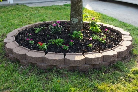 Cheap+Landscaping+Ideas+For+Back+Yard | Landscaping ideas. by meredith