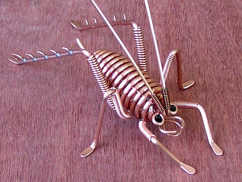 copper weta ... is that the same as a cricket?