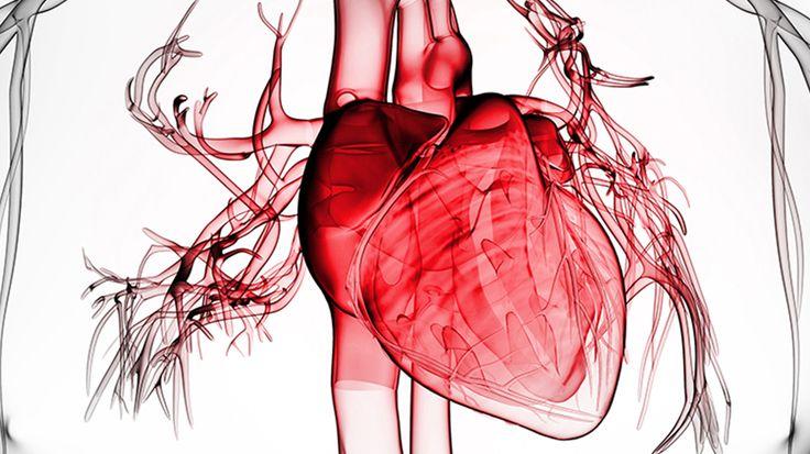 maconha pode ajudar nas doencas do coracao Maconha pode ajudar nas doenças do coração?