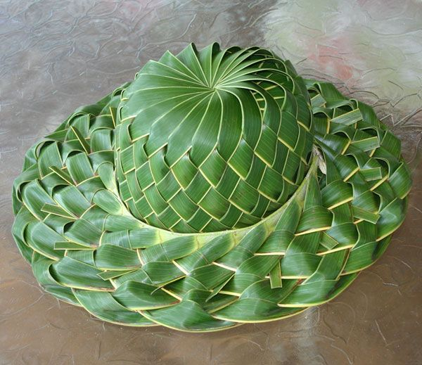 Basket Weaving With Leaves : Best images about palm frond weaving on