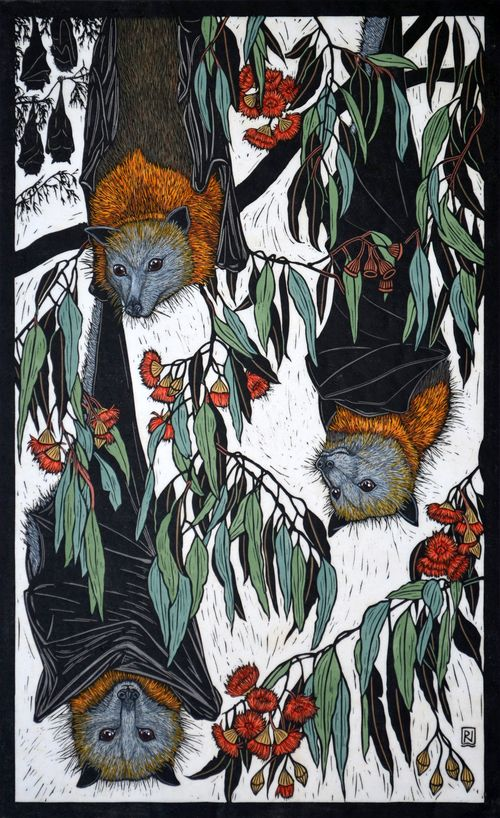 Grey-Headed Flying Fox70.5 x 43 cm Edition of 50Hand coloured linocut on handmade Japanese paper. Rachel Newling