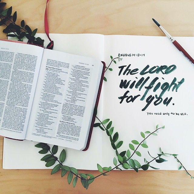 """""The LORD will fight for you; you need only to be still."" - Exodus 14:14 // Let our Father meet you in your need today. You are His BELOVED!! Image via: […"""