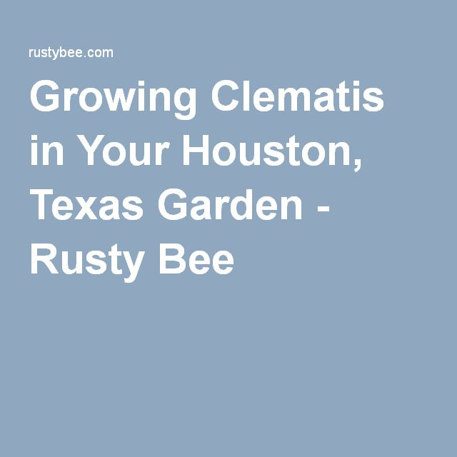 Houston Gardening
