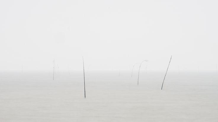 Texel - Waddenzee