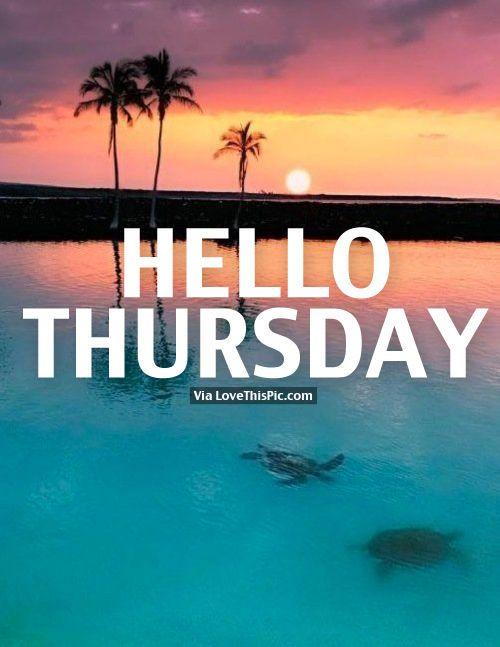 Thursday                                                       …