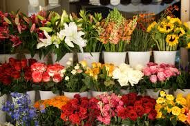Local Flower Shops Near Me,  http://flowersshop.spruz.com/  We also supply exact same day blossom delivery in India on a number of our products.