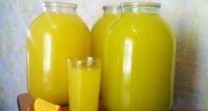 Domácí pomerančový džus ze 4 ks pomeranče = 9 l džusu