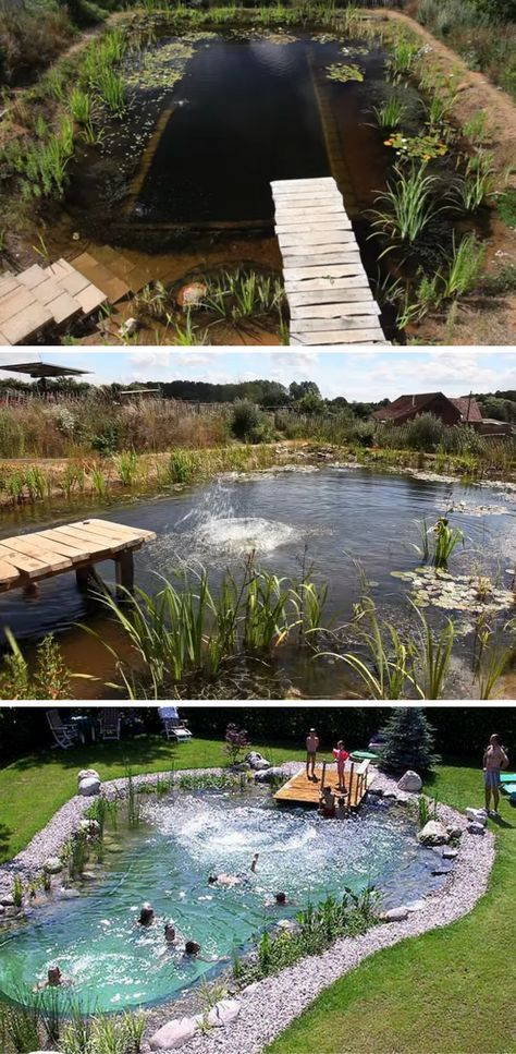 17 Best Ideas About Natural Pools On Pinterest Natural Backyard Pools Swimming Ponds And