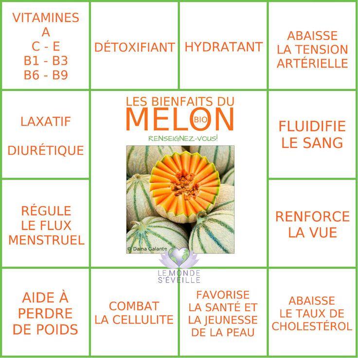 Les Bienfaits du Melon | LE MELON Le Monde s'Eveille Grâce à Nous Tous ♥