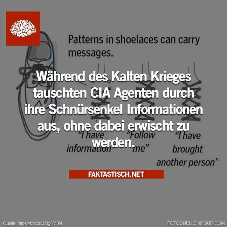 25 wissenswerte Fakten – CONN3CTOR – Anne Müller