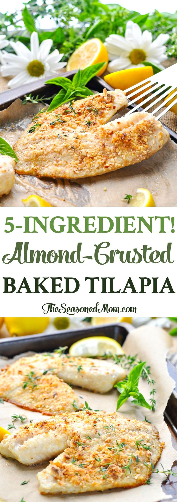 5-Ingredient Almond-Crusted Baked Tilapia is a healthy, easy, low carb dinner recipe with just 5 minutes of prep! Fish Recipes | Low Carb | Easy Dinner Recipes | Healthy Dinner Ideas