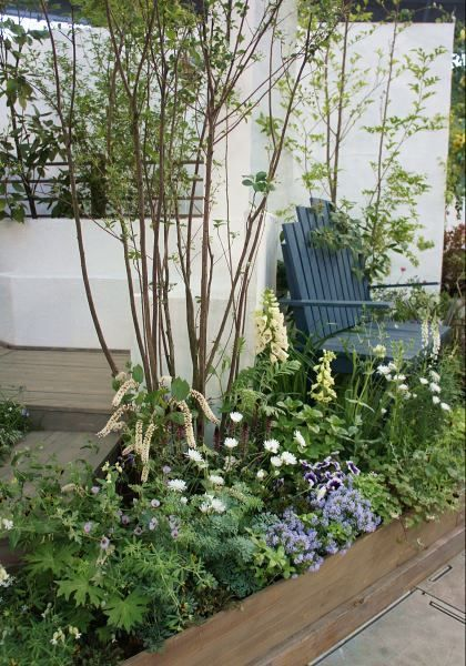 最低気温13.3度。最高気温31.6度。晴れ。連続で真夏日。湿度が低いからまだマシだけど、もう本気の蚊が出てきていて、庭で快適に過ごせる日々は今季終了か…...