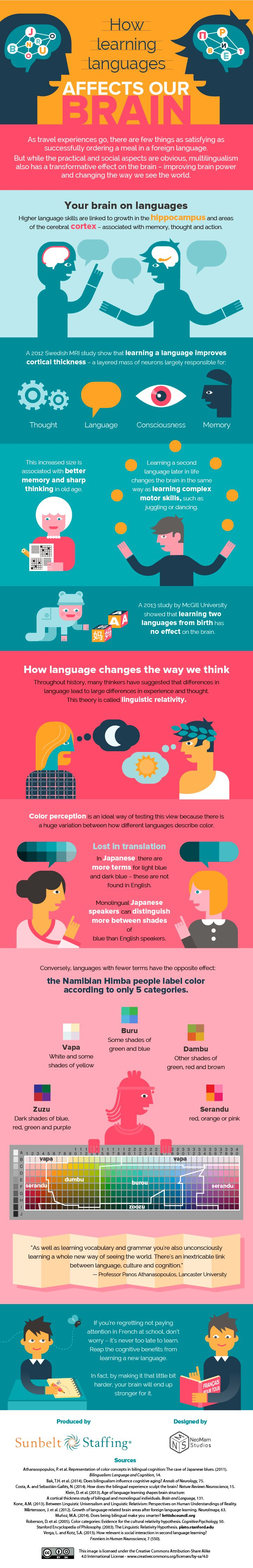 best ideas about learn foreign language language how learning languages affects our brain infographic elearninginfographics com