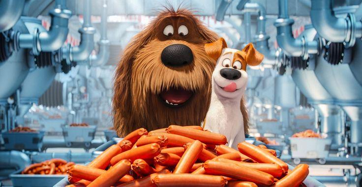 Será que Pets - A Vida Secreta dos Bichos leva o Oscar em 2017?
