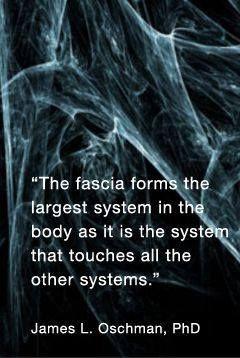 Kind of like mycelium