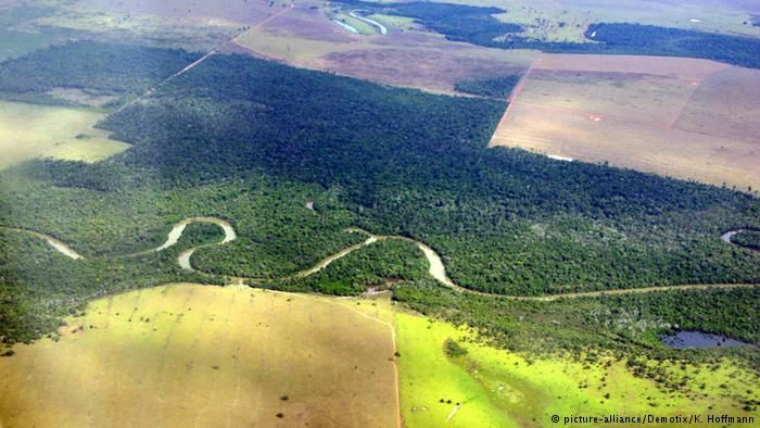This is absolutely disgusting & deserving of out utmost effort to oppose! The Amazon is under attack on all fronts  & an abysmal Government is facilitating it !