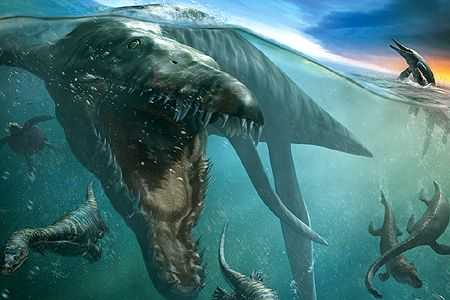 Kronosaurus is an extinct genus of short-necked pliosaur. It was among the largest pliosaurs, and is named after the leader of the Greek Titans, Cronus. Kronosaurus lived in the Early Cretaceous Period. The teeth of Kronosaurus are large in length (exceeding 7 cm - the largest up to 30 cm long with 12 cm crowns).
