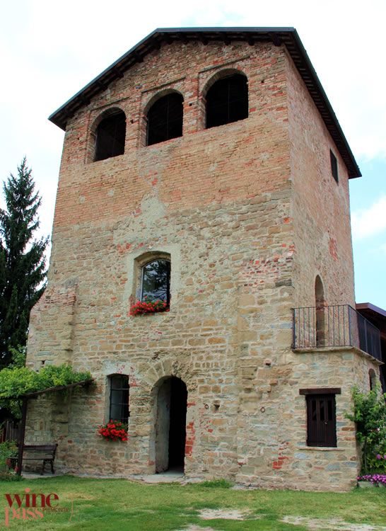 Dogliani, Langhe, province of Cuneo, region of Piedmont, Italy