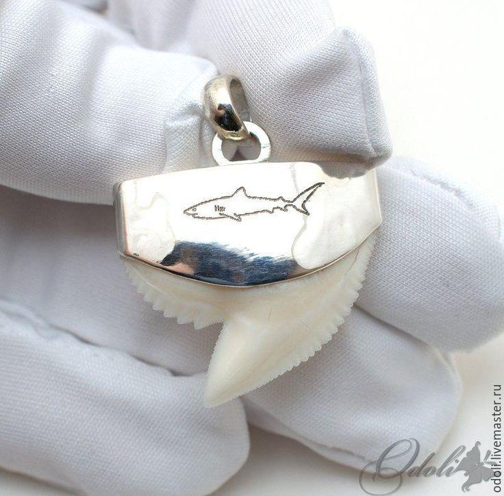 Купить Серебряный кулон с зубом тигровой акулы - белый, зуб акулы, серебро 925 пробы