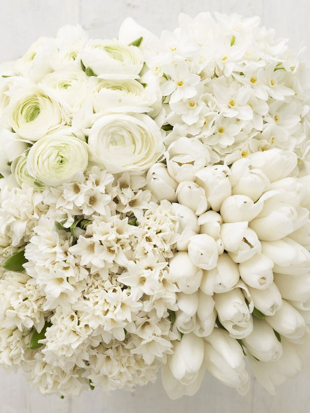 Soooo perfectly pretty! 30 paper white narcissi, 25 white ranunculas, 25 white single tulips, 15 white hyacinths