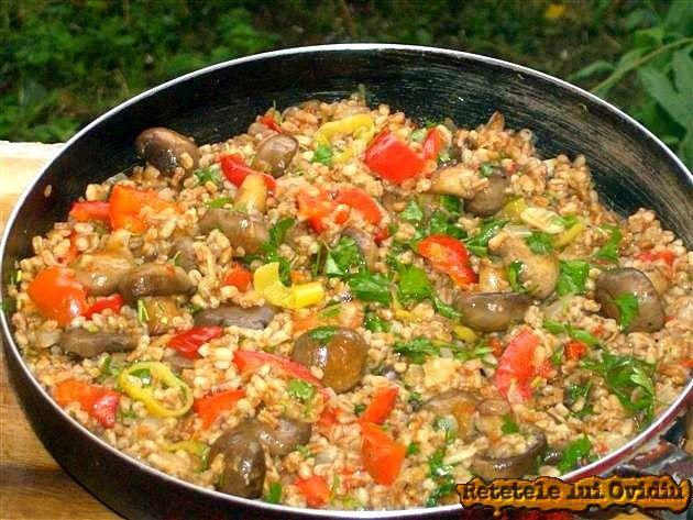 ...am preparat o mancare de arpacas cu ciuperci, ceapă şi ardei, simplă şi care nu cere timp, gustoasă, de care eu sunt mulţumit. Arpacas