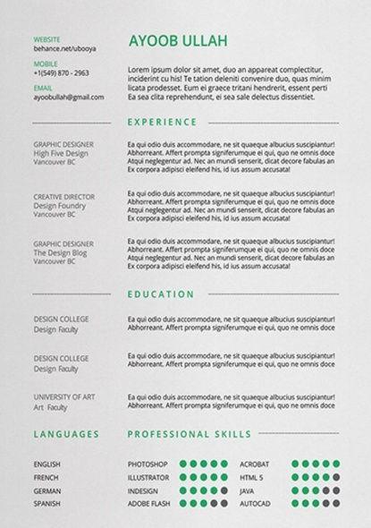 formatos para currículum