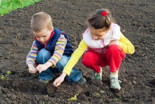 Junior Garden Club Indianapolis, Indiana  #Kids #Events