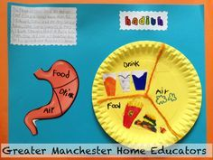 islam for kids crafts about halal haram - Поиск в Google