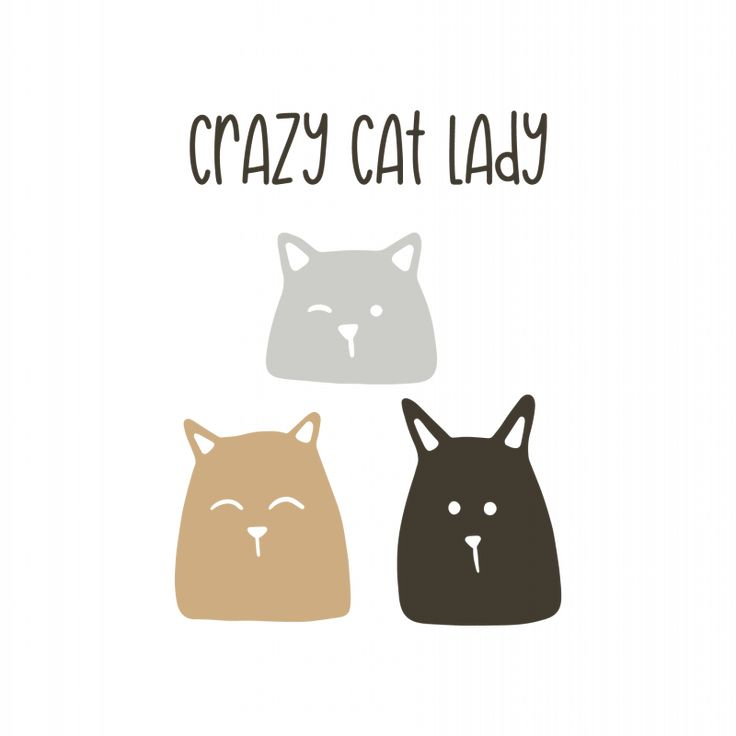 Crazy cat lady5205 free svg svg files for cricut trong 2020