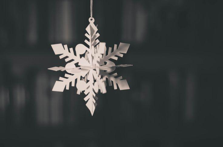Celebrating Our Similarites: Are We Precious Snowflake Librarians?