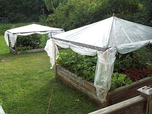 """Pinner Wrote: In the center of the gardens, we placed old used wooden patio umbrella frames (also salvaged) which we secured to the outer frame with wire. Plastic greenhouse grade sheeting was placed over the top and secured to the upper frame with strapping. At the base of each side """"wall"""" we rolled the plastic around, and secured it to 8', 1"""" x 2"""" lumber scraps, added hooks and eyes, and voila!…our greenhouses."""