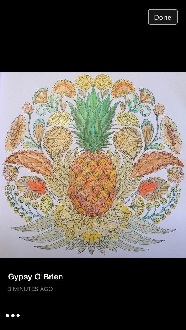 128 Best Millie Marotta Tropical World Animal Kingdom Coloring Book Images On Pinterest