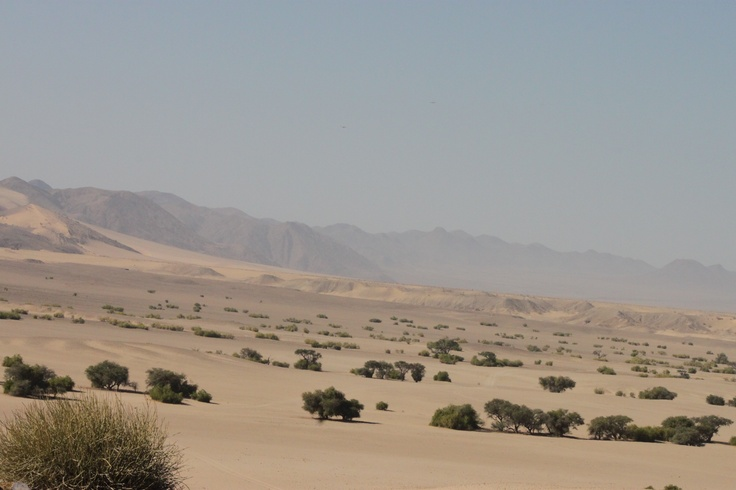 Vast expanses are common in #Namibia.