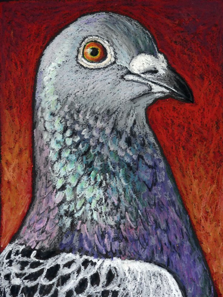 Original Bird Painting in Oil Pastels of a by AndeHallFineArt