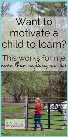 motivate a child to learn | homeschooling | homesteading | soulyrested.com