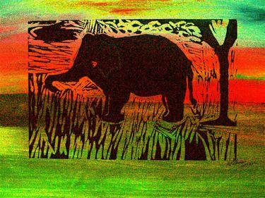 'African Sunset'