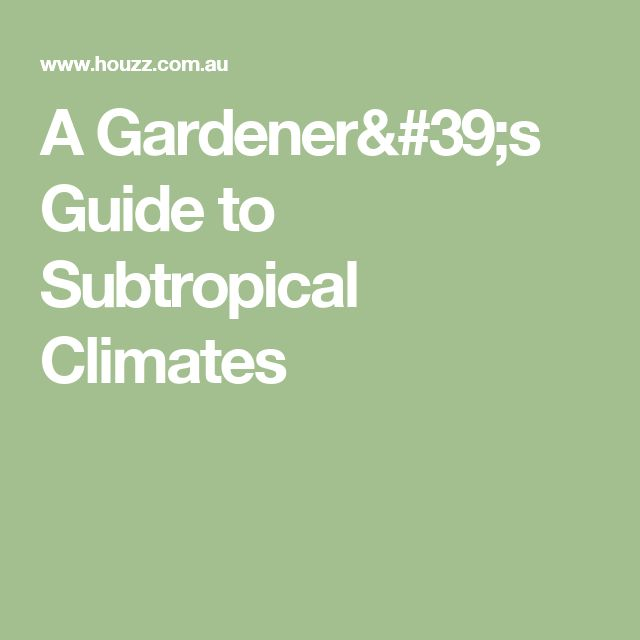 A Gardener's Guide to Subtropical Climates