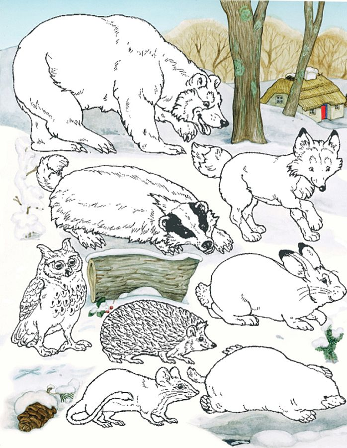 Animals from The Mitten by Jan Brett