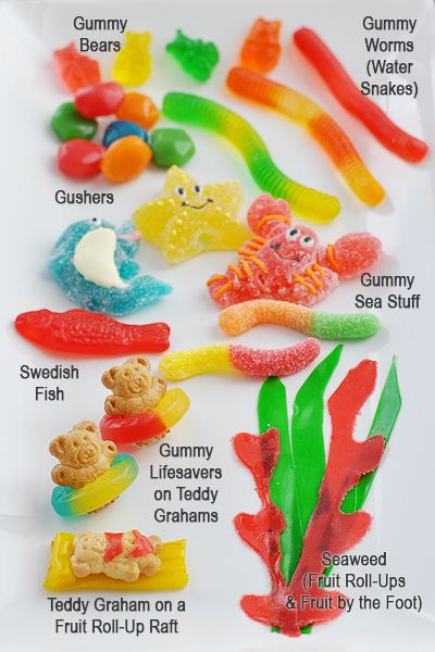 Gummy fishbowl, love the Teddy Grahams on the fruit roll-up raft