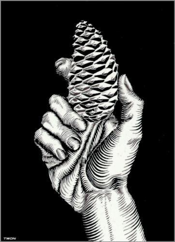 Hand with Fir Cone - M.C. Escher, 1921